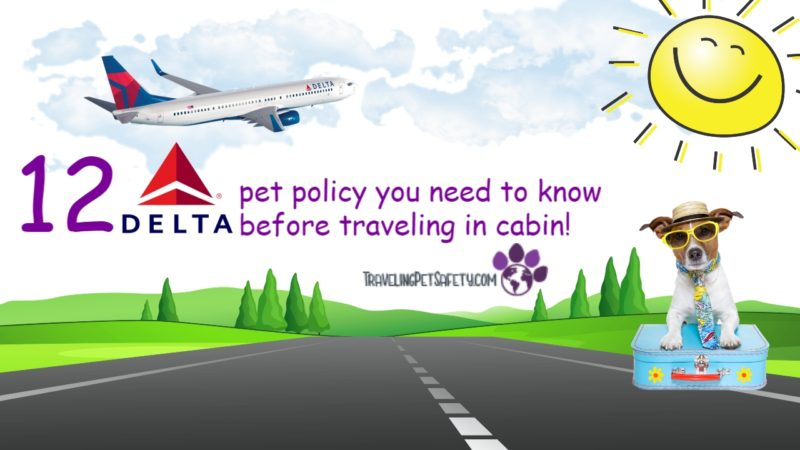 delta pet policy in cabin